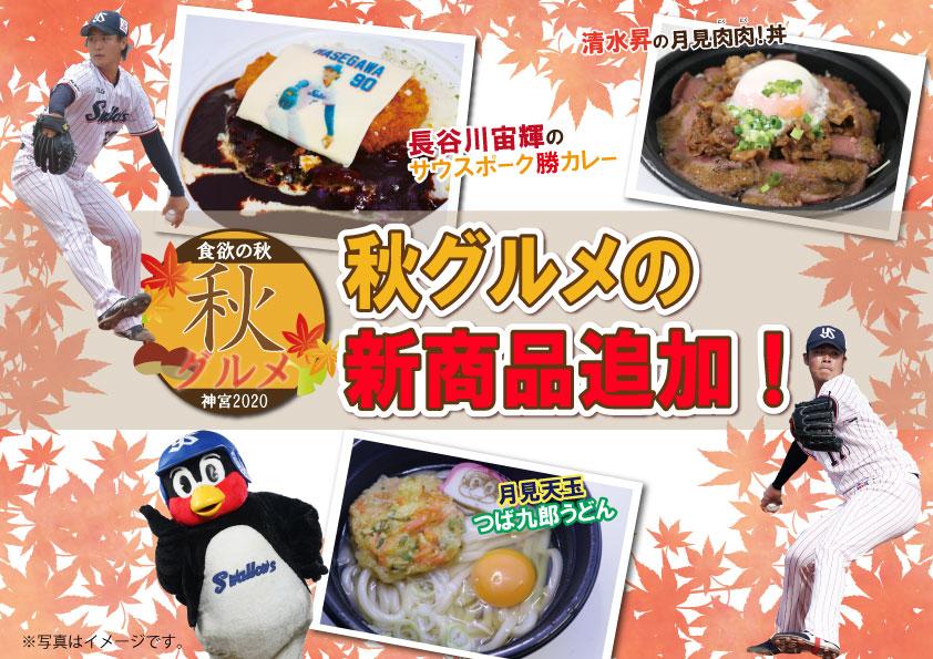 秋の神宮球場グルメ新商品!